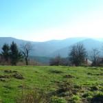 Vente La Vancelle Terrain 45 Ares Constructible Viabalisé ref: Lavanc-ter 447 200 €